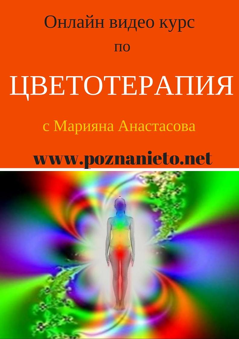 Онлайн видео курс