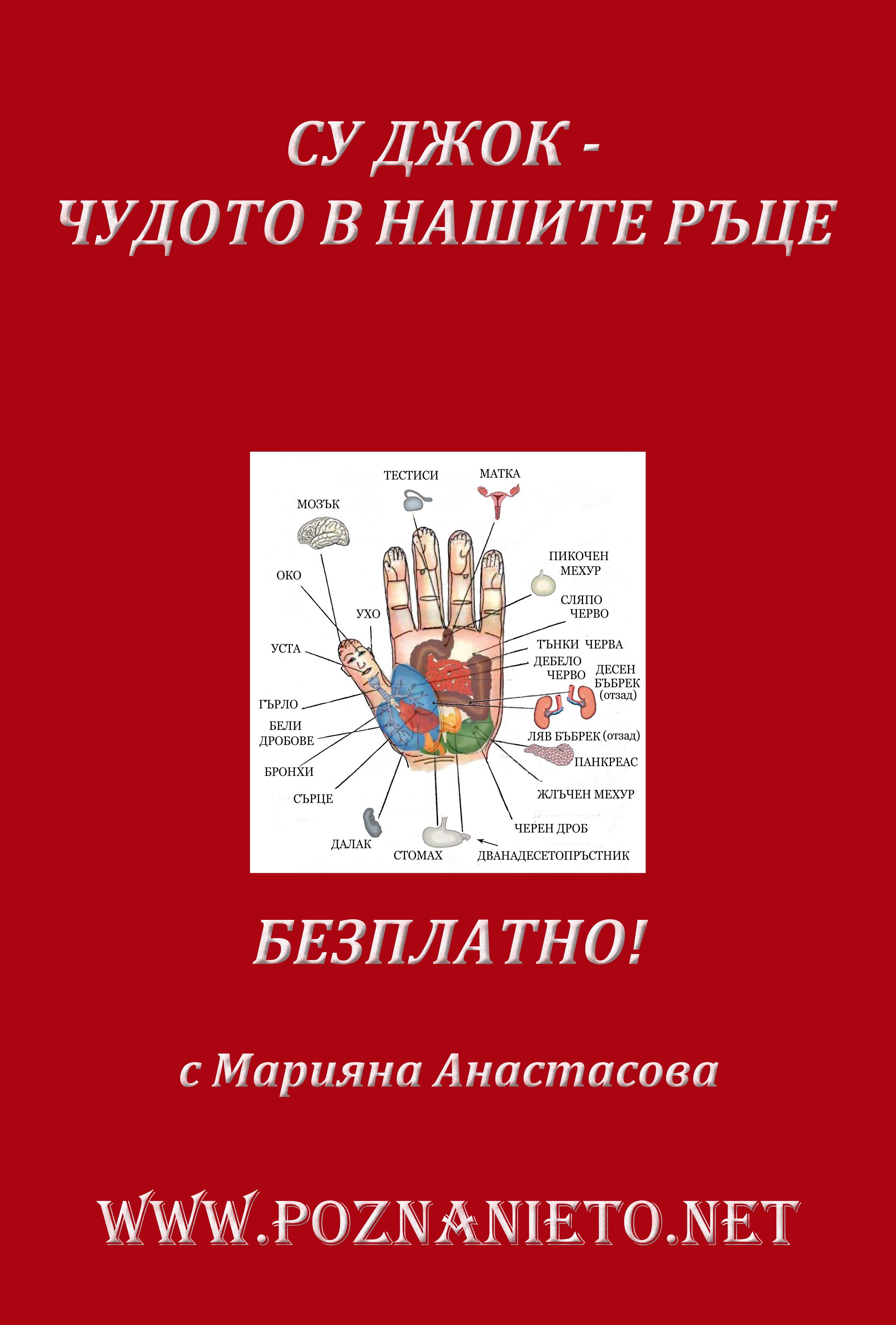 СУ-ДЖОК copy2