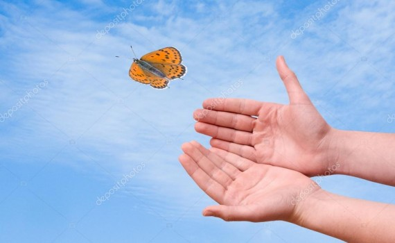 depositphotos_6627951-stock-photo-butterfly-flying-from-hand