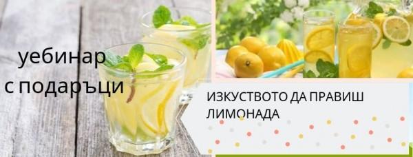 изкуството да правиш лимонада(1)